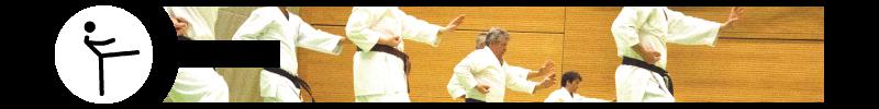 https://gundelfinger-turnerschaft.de/wp-content/uploads/banner_karate_2.png
